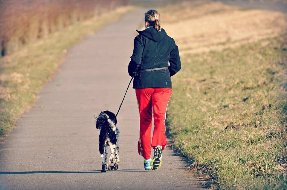 Woman jogs with dog. Always consult with your vet before adding easy exercises with your dog. Some activities may be too difficult depending on your dog's health, breed.