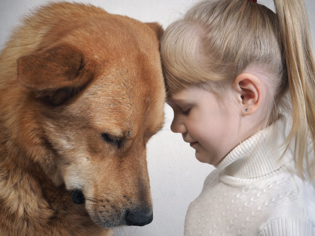 Girl cuddles with golden retriever. For many kids, a dog death is their first experience with serious loss and grief. Although everyone grieves differently, you can help your children cope.