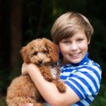 Boy hugs miniature poodle. Are poodles good with kids? Yes, their natural easy-going temperament makes them ideal companion animals. .