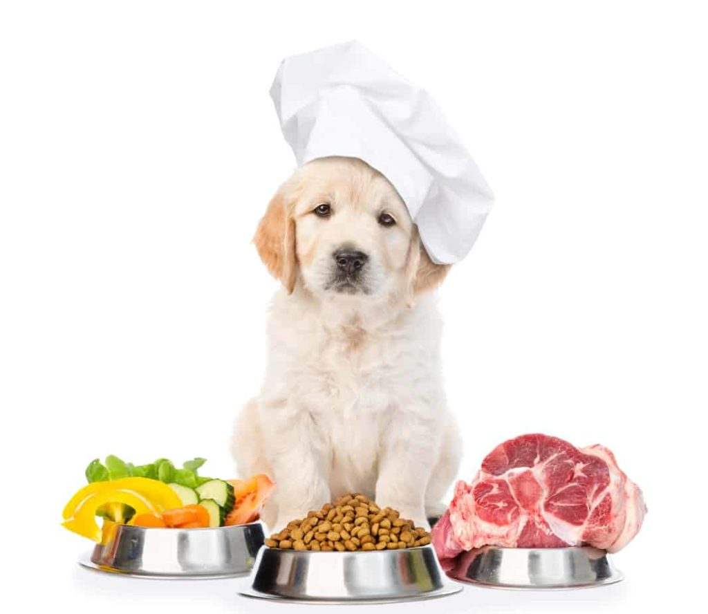 Use quality ingredients to make homemade dog food.