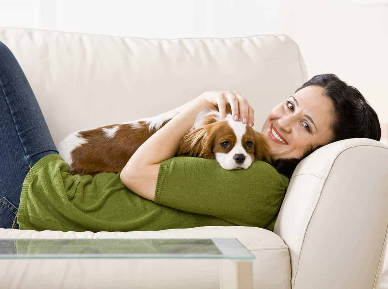 Woman snuggles on couch with Cavalier King Charles Spaniel.
