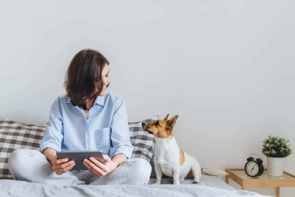 Woman sits with Jack Russell Terrier. Before becoming a first-time puppy parent consider the breed before settling on the perfect pup.