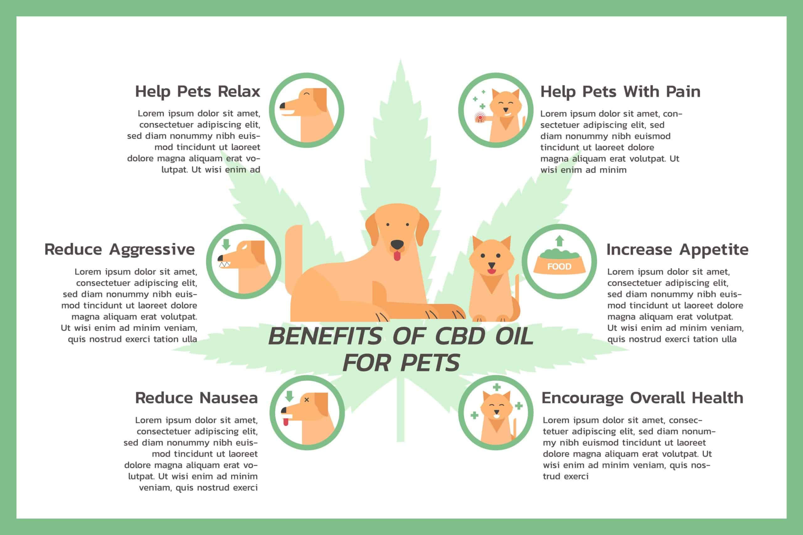 CBD oil benefits graphic details ways CBD helps dogs.