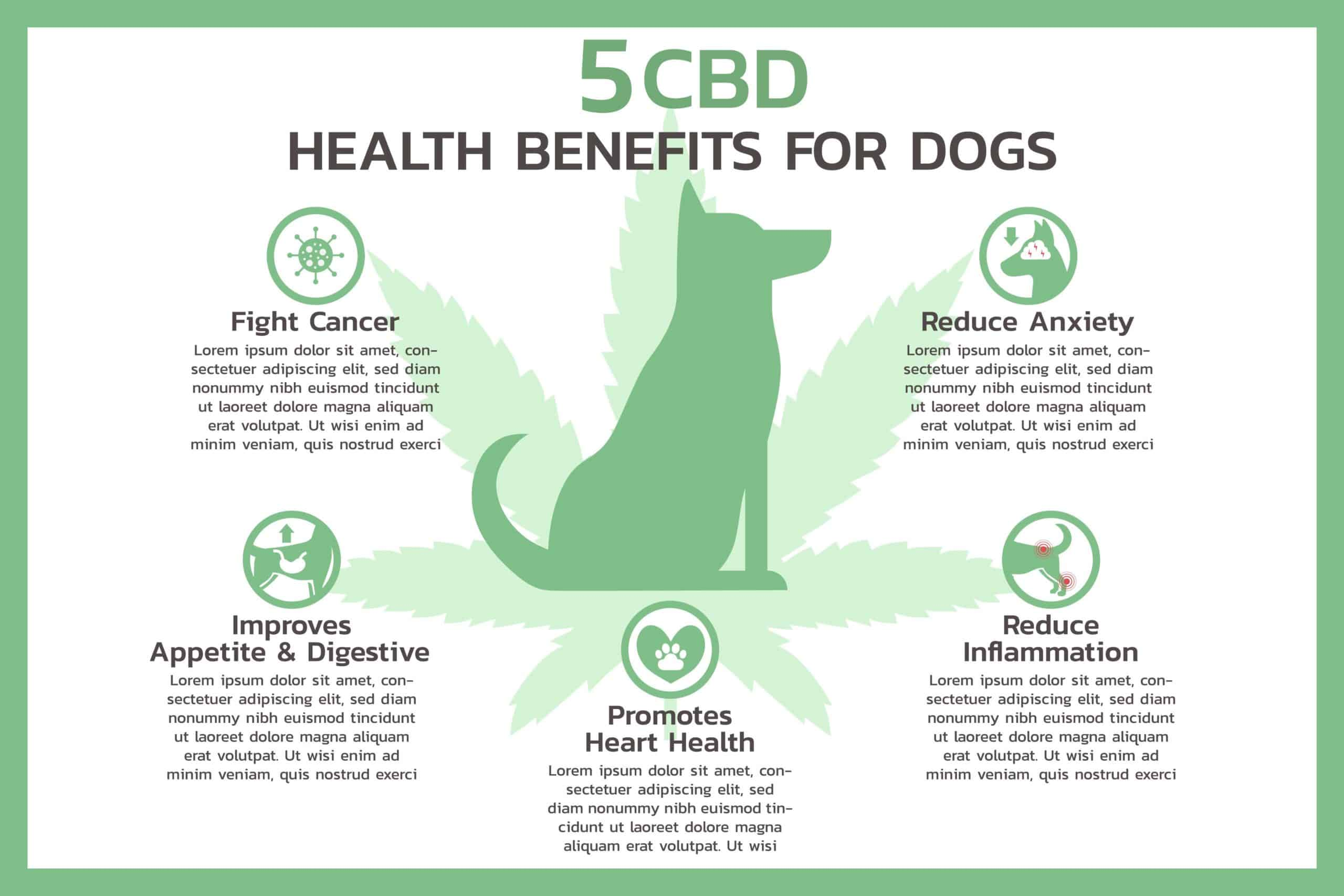 Pet CBD health benefits graphic