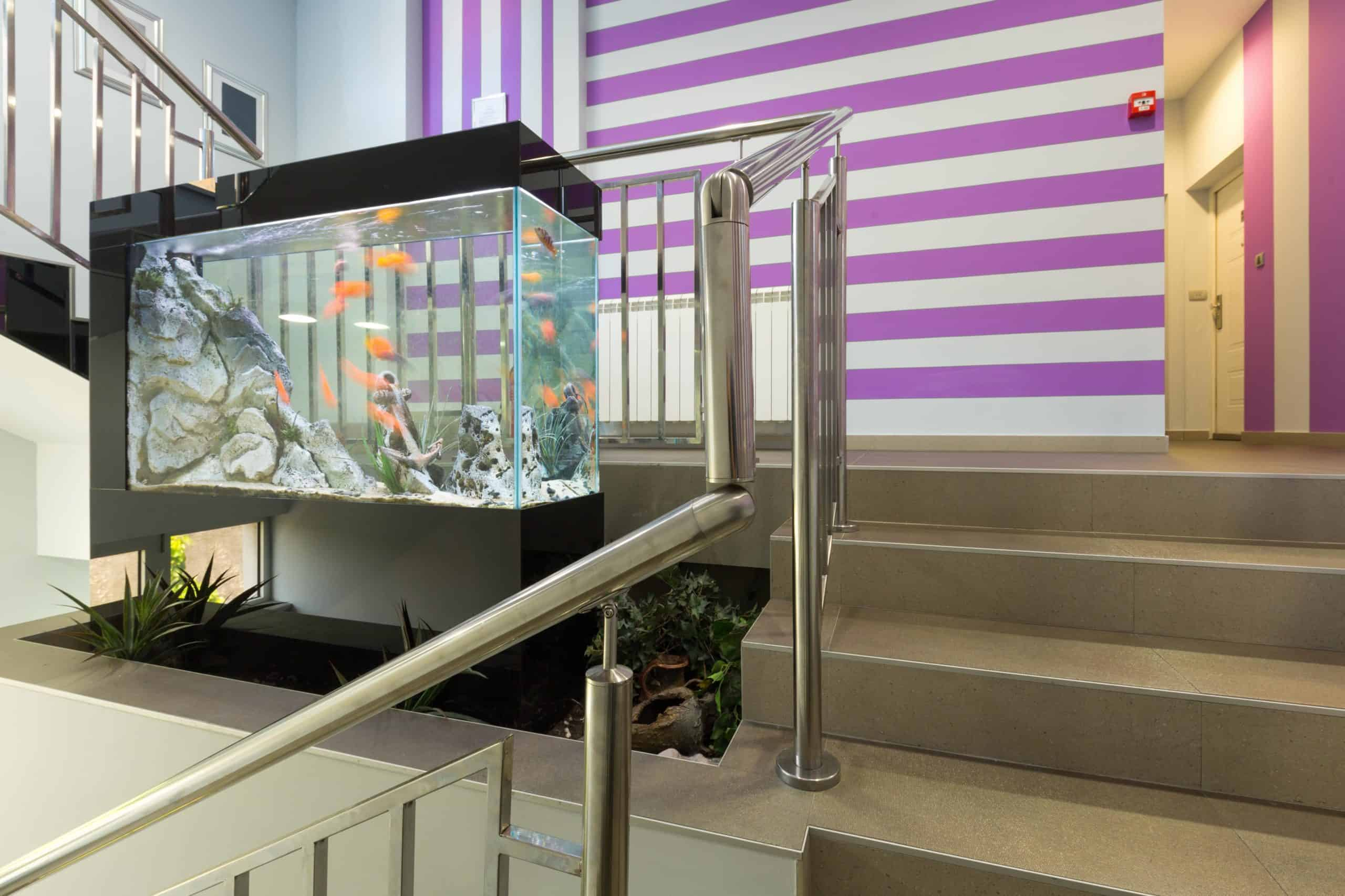 Aquarium location in home. Set your aquarium on a countertop or high shelf out of your dog's reach. Put larger tanks on stands built for safety that are tucked out of reach in an alcove or another spot that's awkward for your dog to get to.