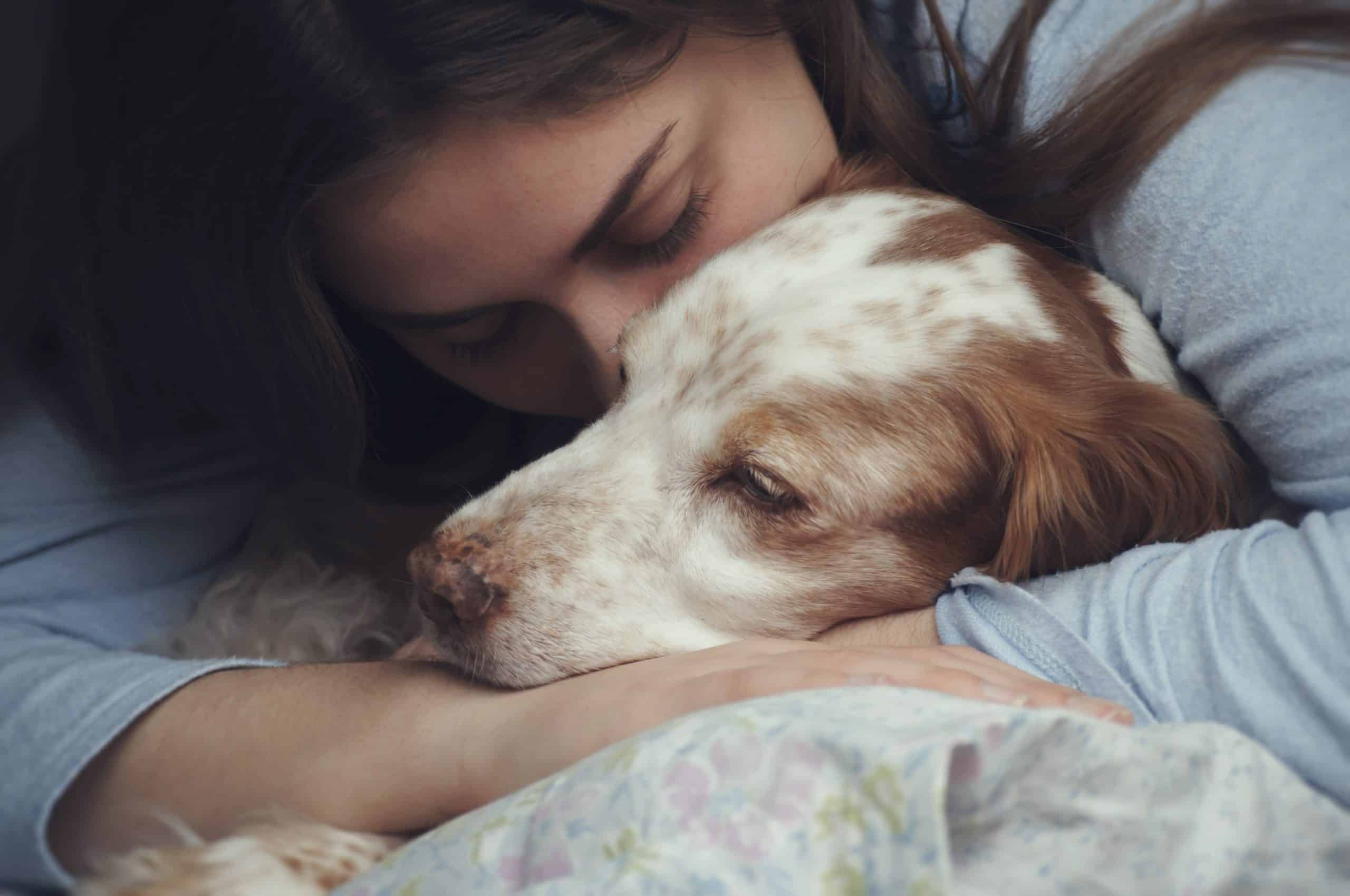 Woman cuddles springer spaniel. The loss of your dog is heartbreaking. Take the time to honor your dog, grieve, and seek support as you cope with your loss.