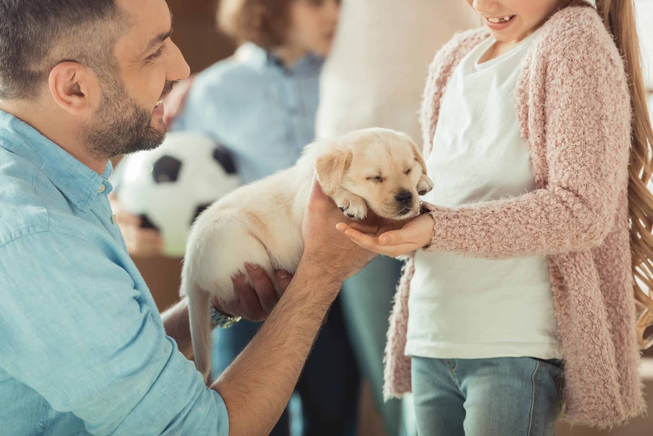 Man hands Golden Retriever puppy to girl. Before you get a child a dog, make sure you have the time, energy, and financial resources to care for a new family member.