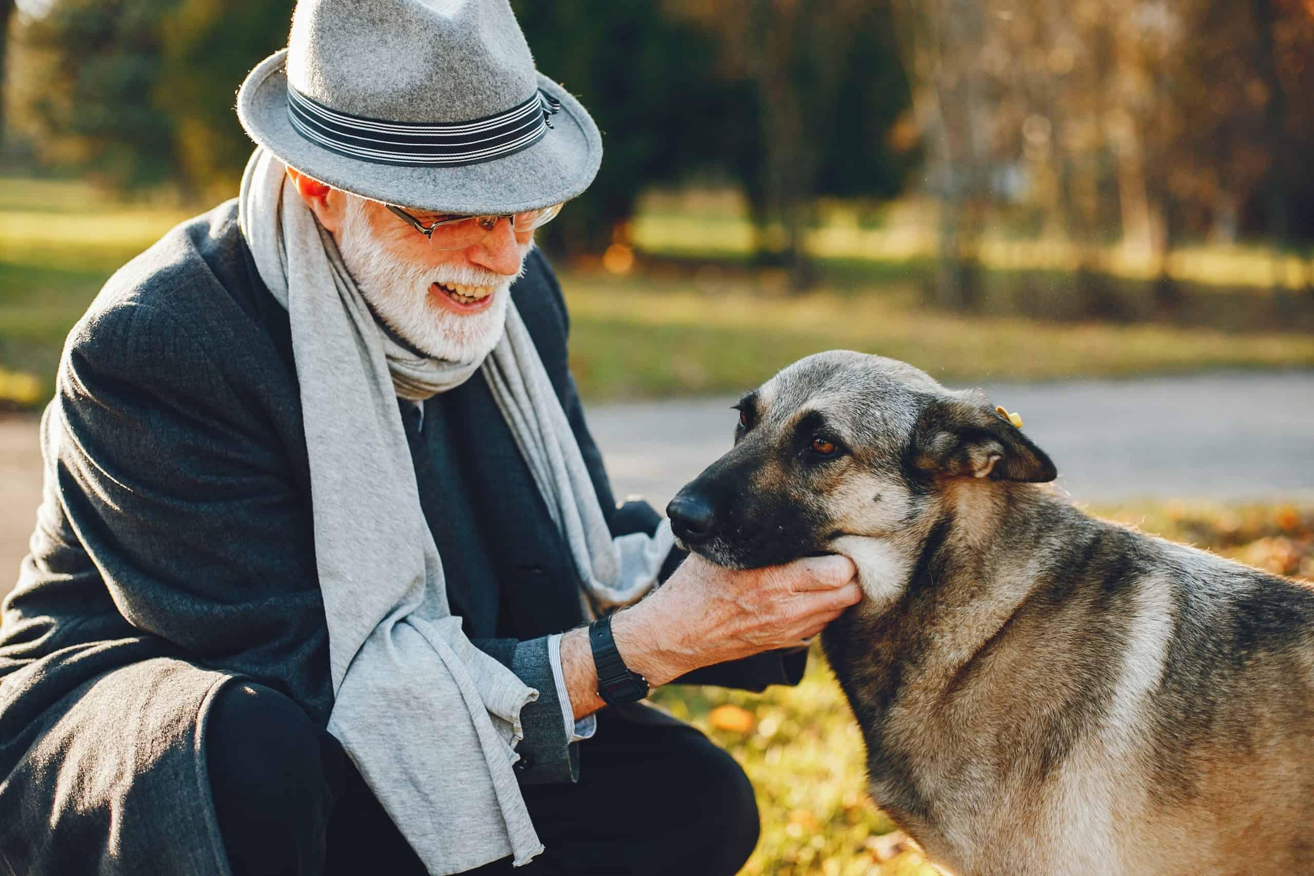 Older man pets dog. Make sure senior dogs get daily exercise.