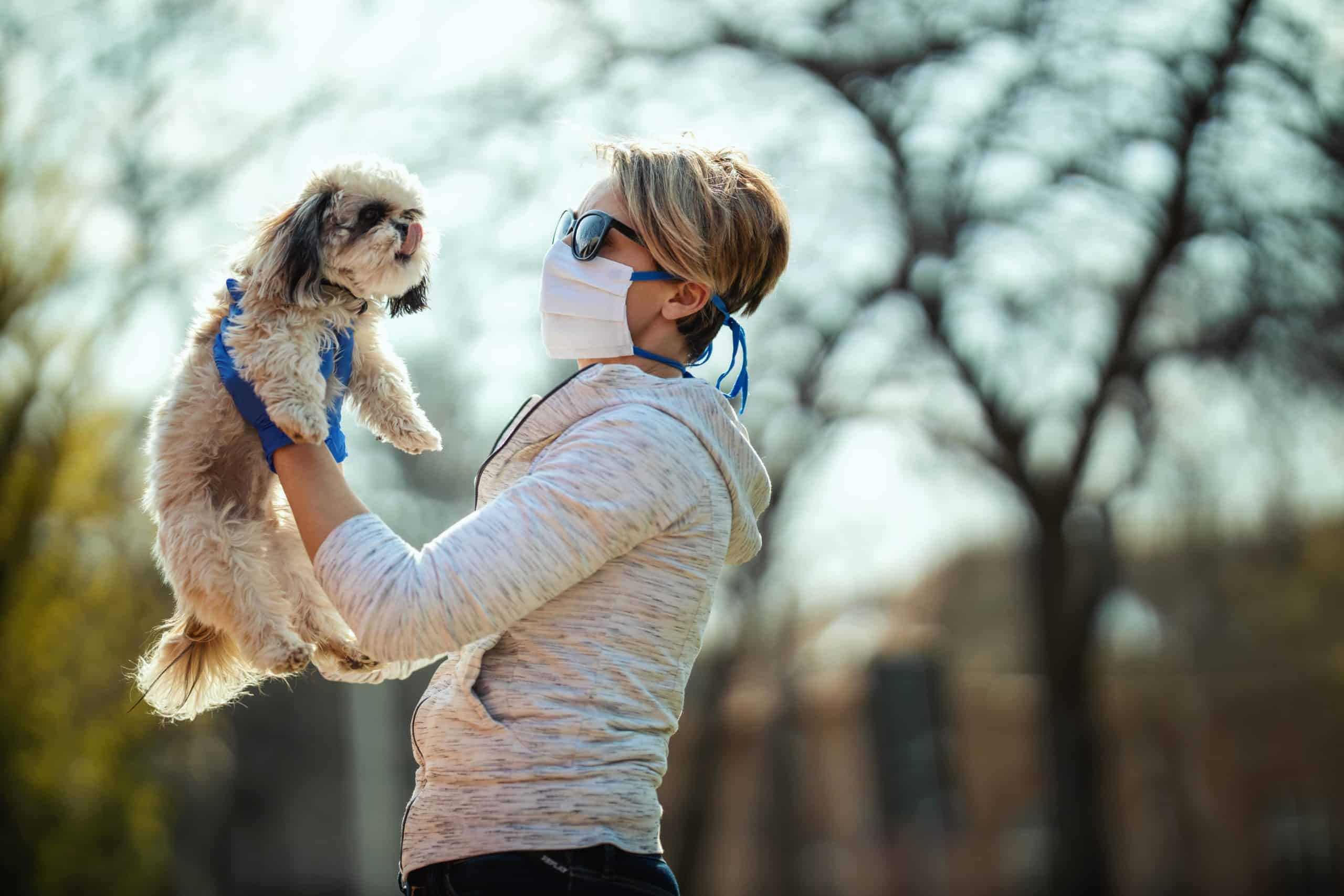 Woman wears a mask and gloves while walking her dog. To protect yourself from COVID-19, remain six feet apart from other people. If you are in an area with other dog walkers, it is advised that you put your dog on a lead to help keep to social distancing.