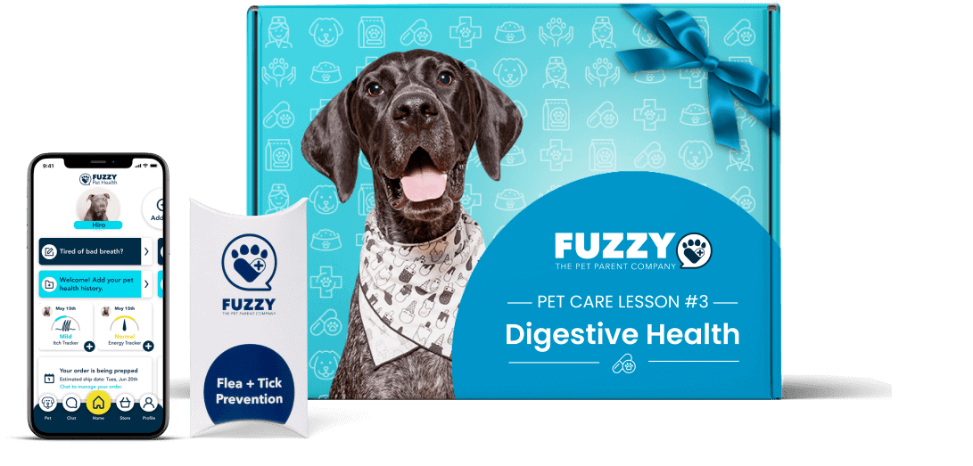The Fuzzy Pet Care lesson digestive health box provides a comprehensive diet and probiotics to help stimulate proper digestion. The box includes pet health probiotics, digestive health chews, and a slow feeder.