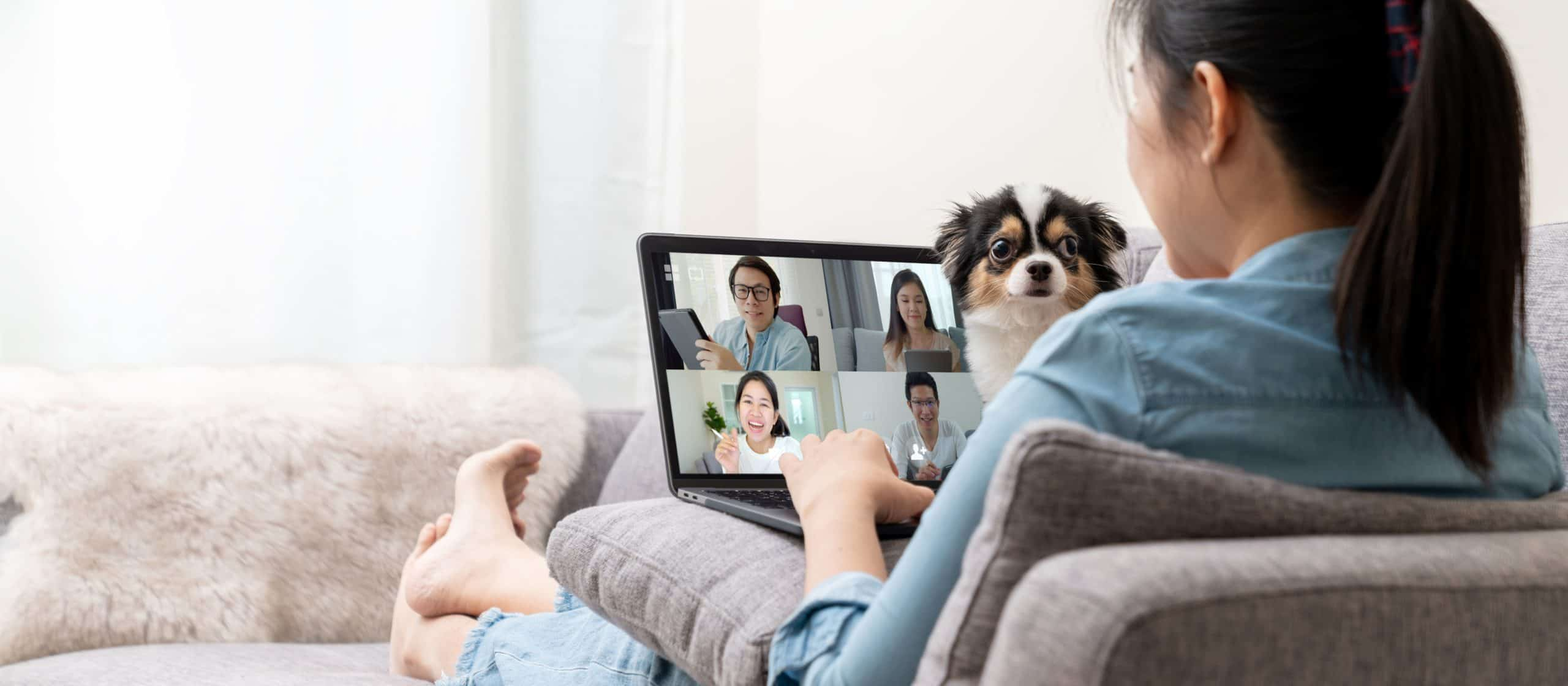Woman working from home with a dog on her lap. When working from home with dogs, tire them out with exercise, use appropriate chew toys, and consider taking them to doggy daycare.