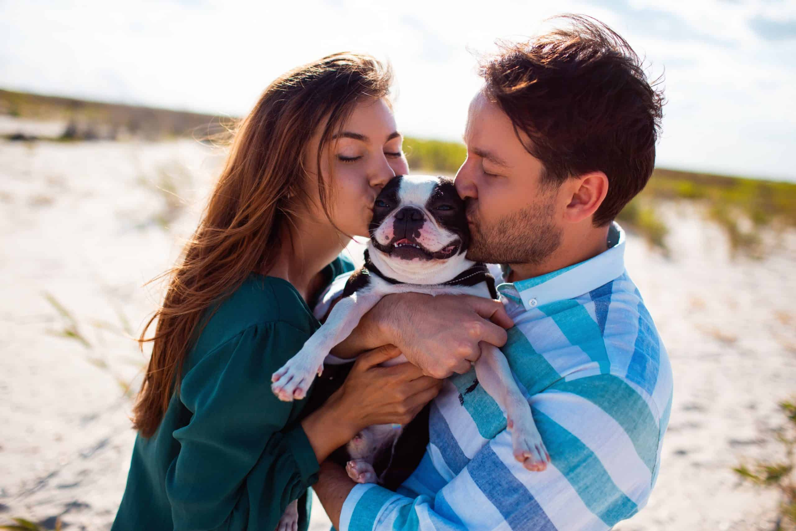 Couple kisses their French bulldog while having a picnic on the beach. Movie dogs play cupid and help create romance in movies including Turner & Hooch, 101 Dalmatians, A Dog's Purpose, and Marley & Me.