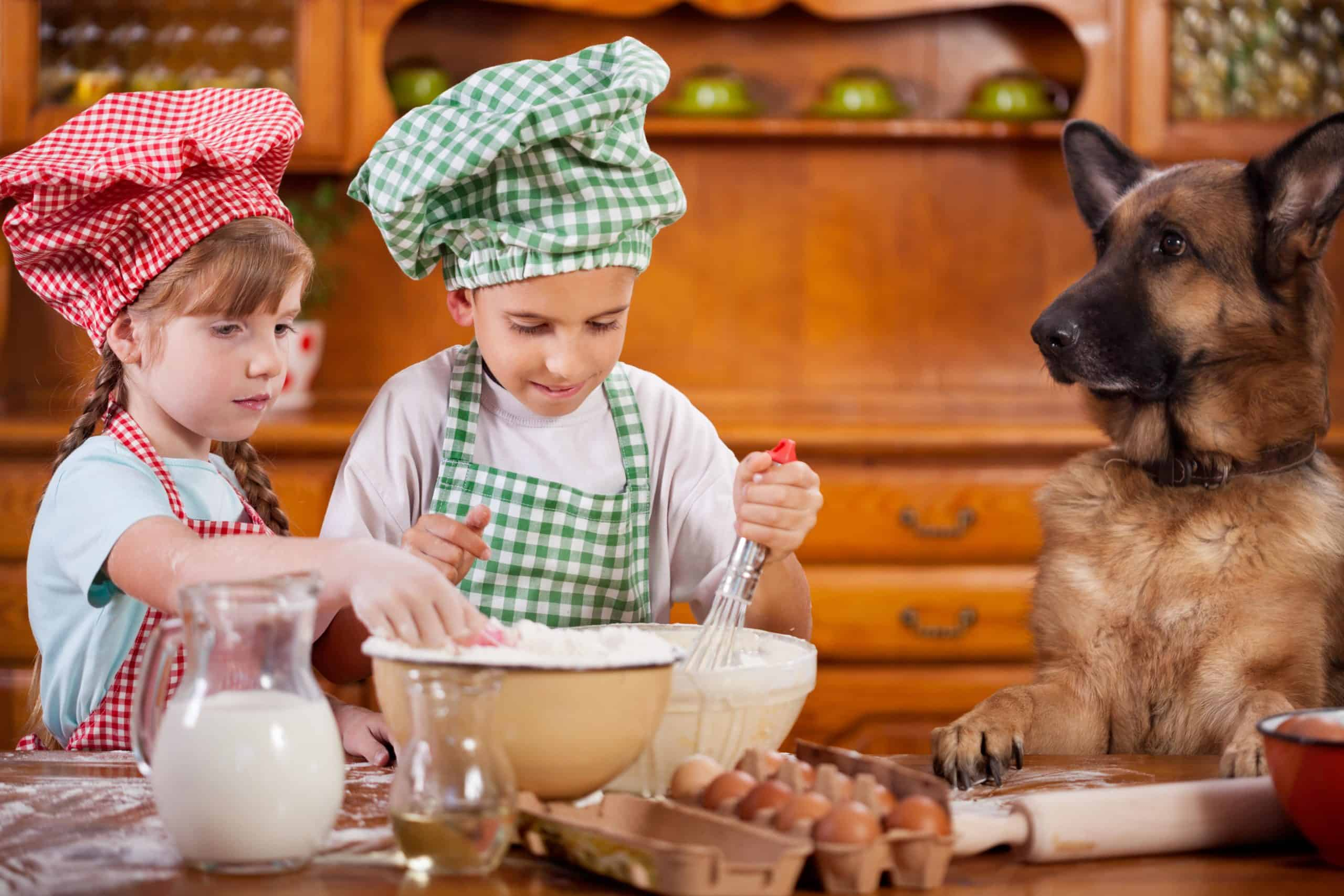 Children bake in kitchen while German Shepherd watches. The yeast in unbaked dough can be life-threatening for dogs.