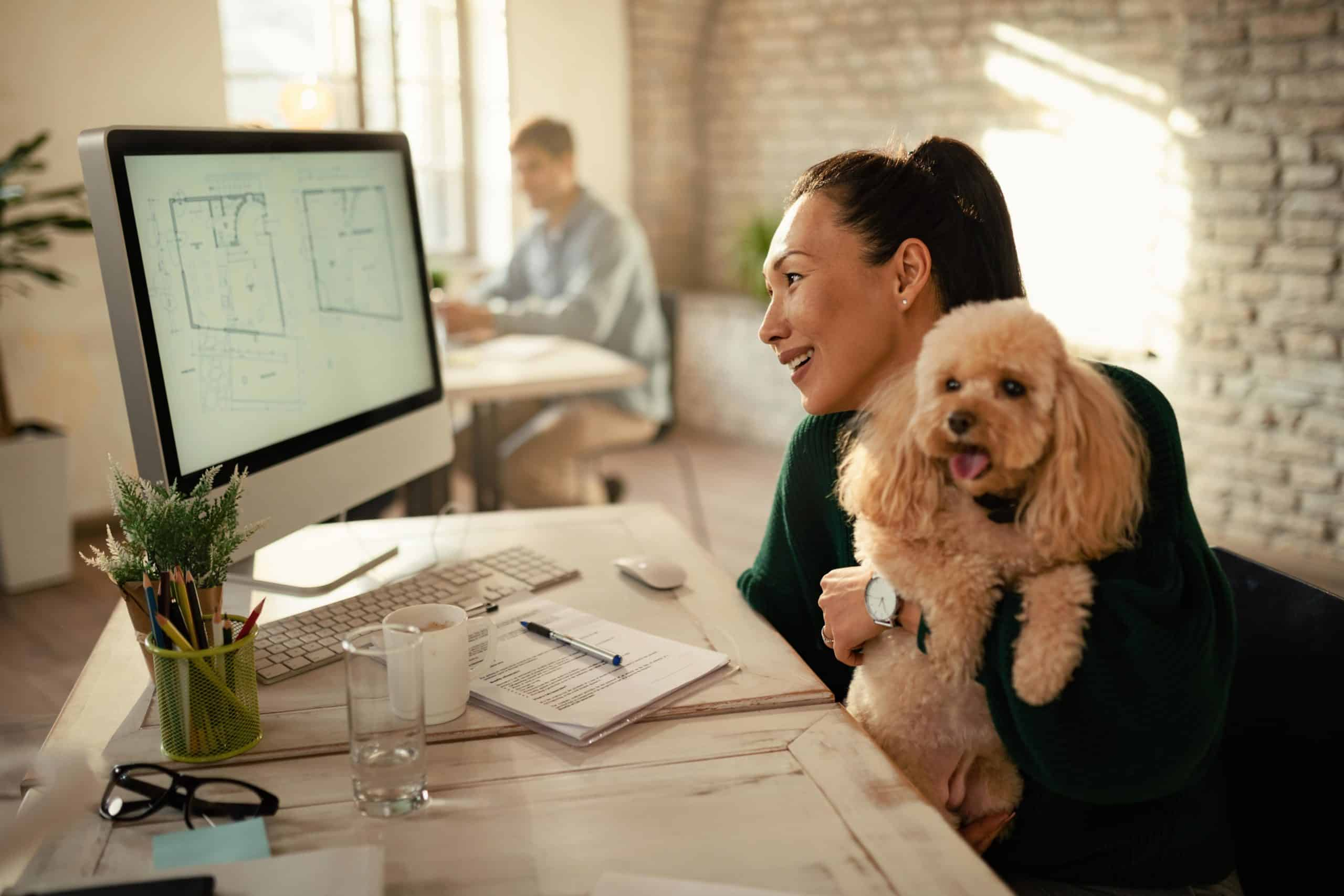 Woman holds poodle as she works in her office. Use technology, pet sitters, and dog-walking services to help create a work/life balance as a pet parent and entrepreneur.