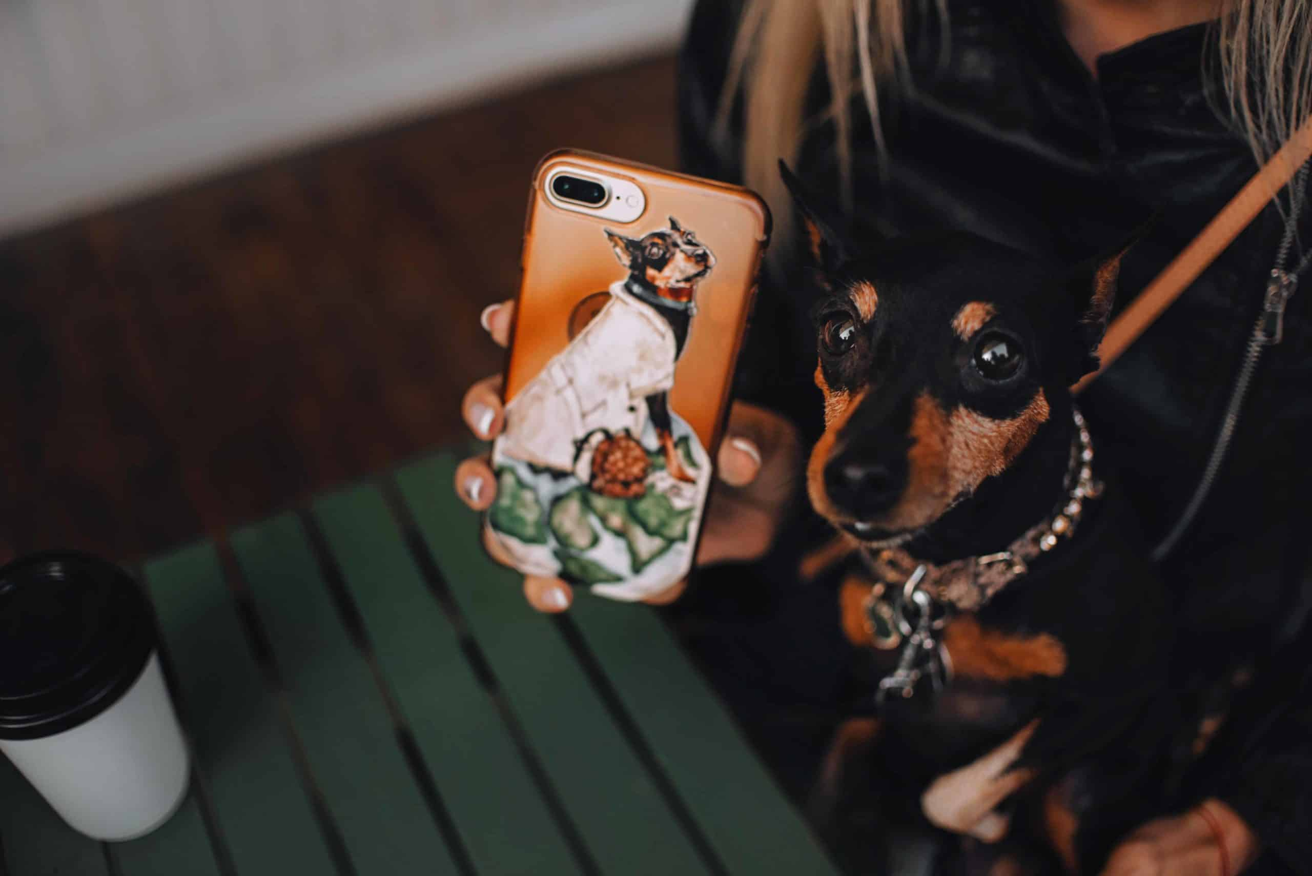 Woman poses with her miniature pinscher and her custom pet phone case.