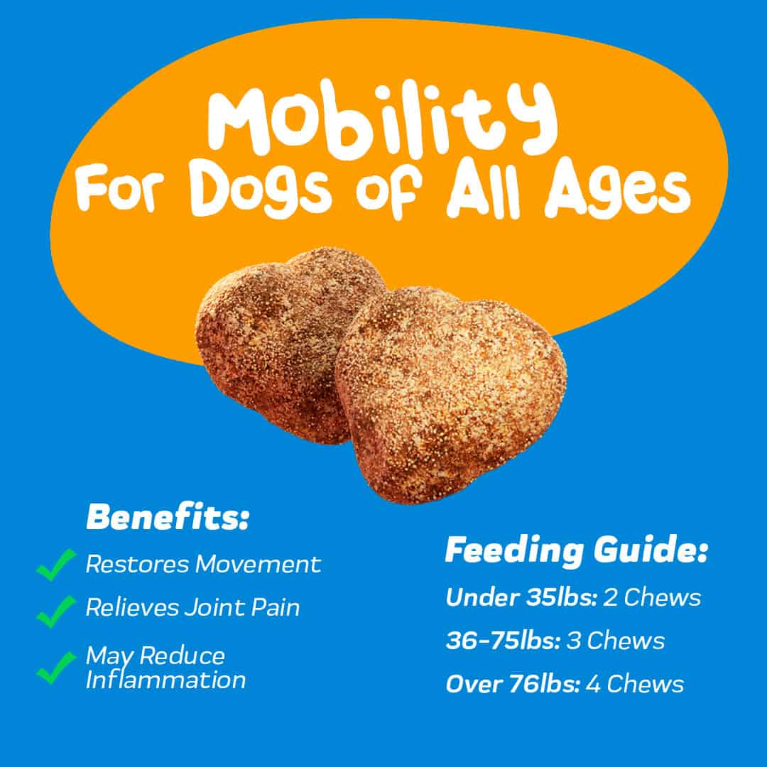 Innovet's Advanced Mobility Support Chews for Dogs benefits and feeding guide graphic.