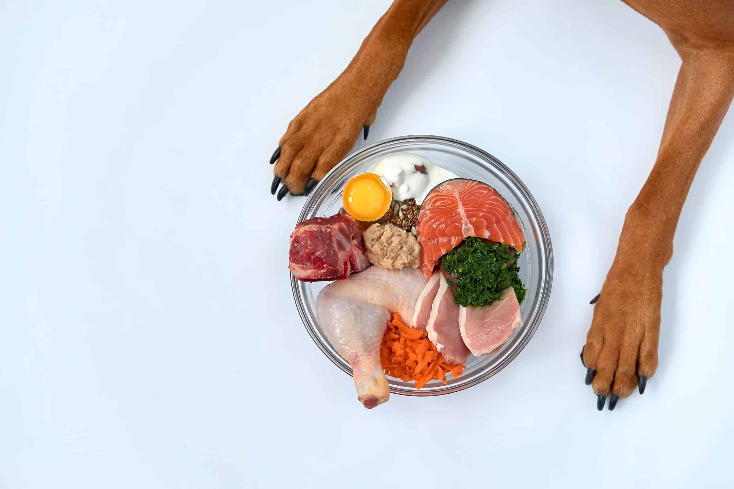 Nutrient-dense dog food contains a balanced amount of animal protein, fats, and trace elements.