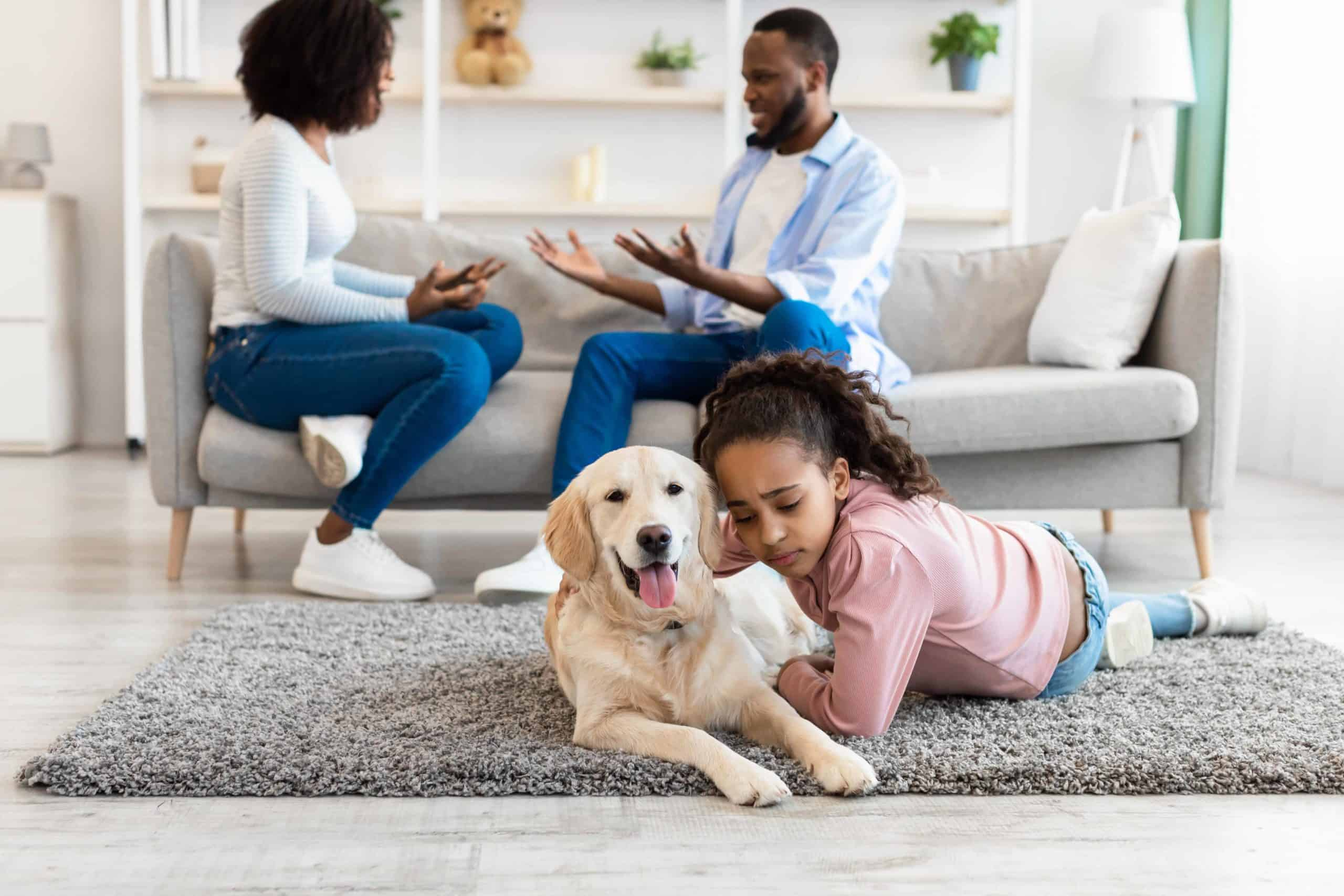 Sad girl hugs Labrador retriever while parents fight in the background. Navigating pet ownership during divorce can be difficult since there are no clear-cut rules in place about what's supposed to happen.