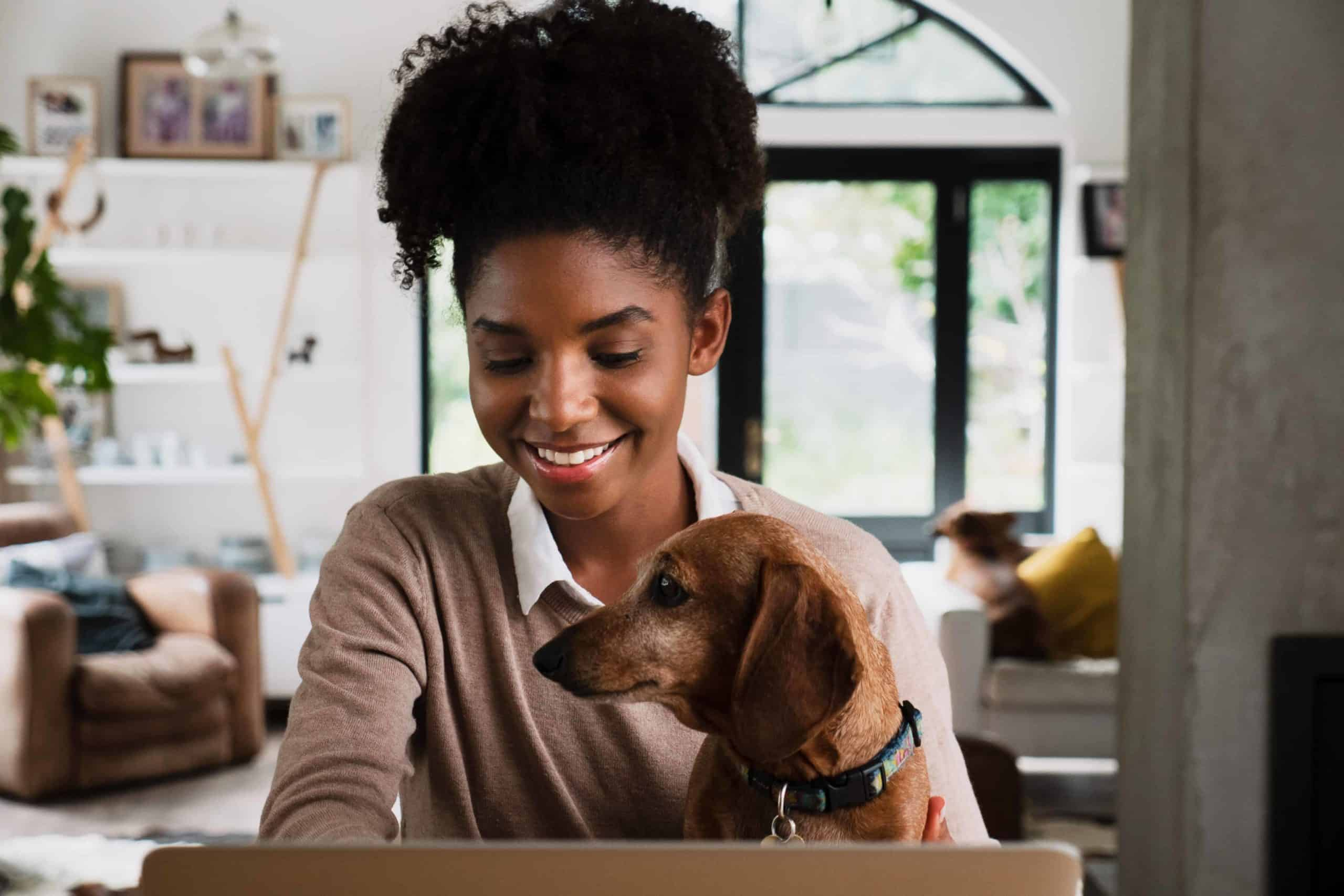 Woman works remotely while holding Dachshund on her lap.