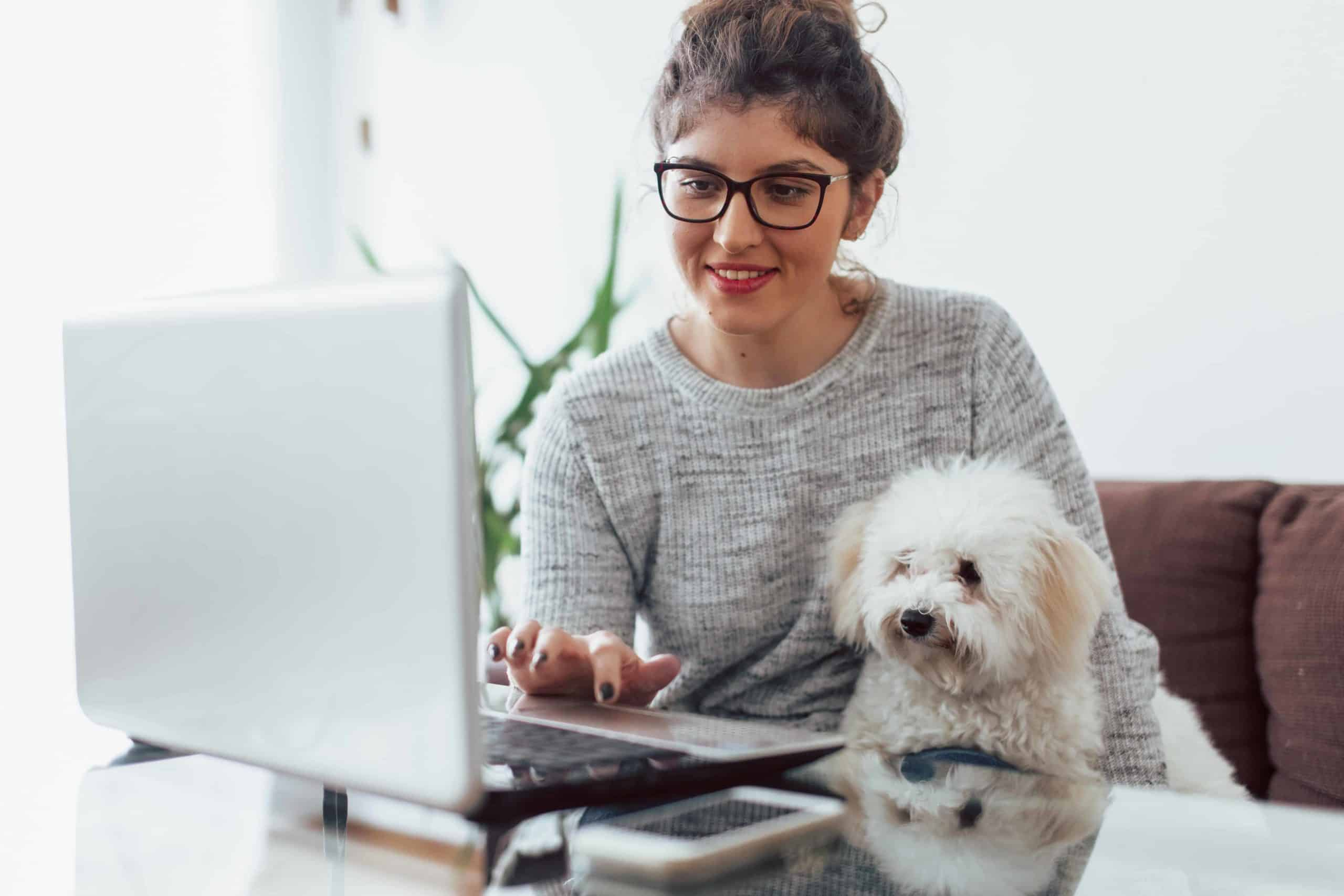 Female college student studies with bolognese dog sitting on her lap. Getting a dog gives college students confidence and love, helps them adjust to living in a new place, improves their mental health, and teaches responsibility.