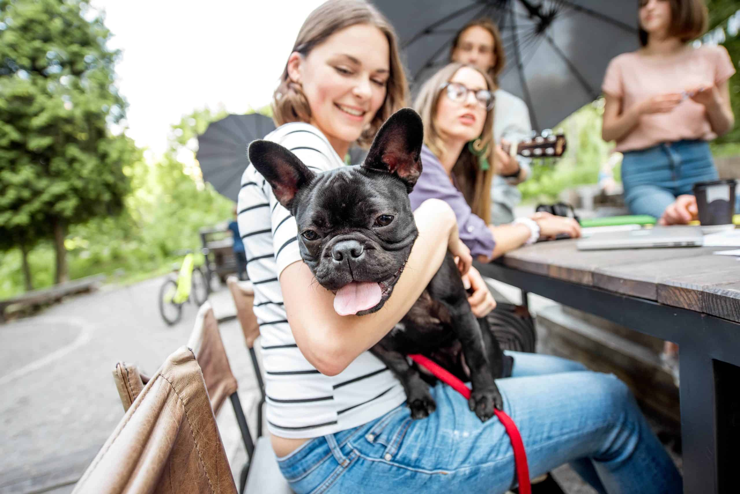 Woman holds French bulldog while studying with other college students.