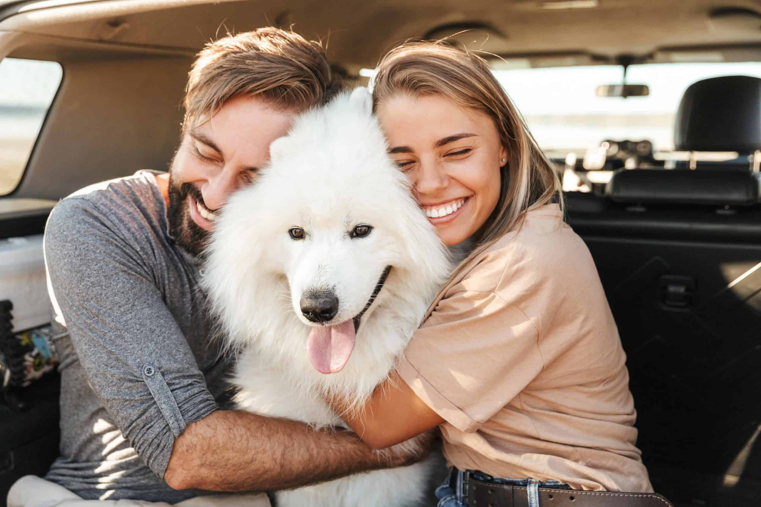 Happy couple hugs a Samoyed. Bring your dog on your date. Consider dog-friendly date options like hiking or going to the dog park.