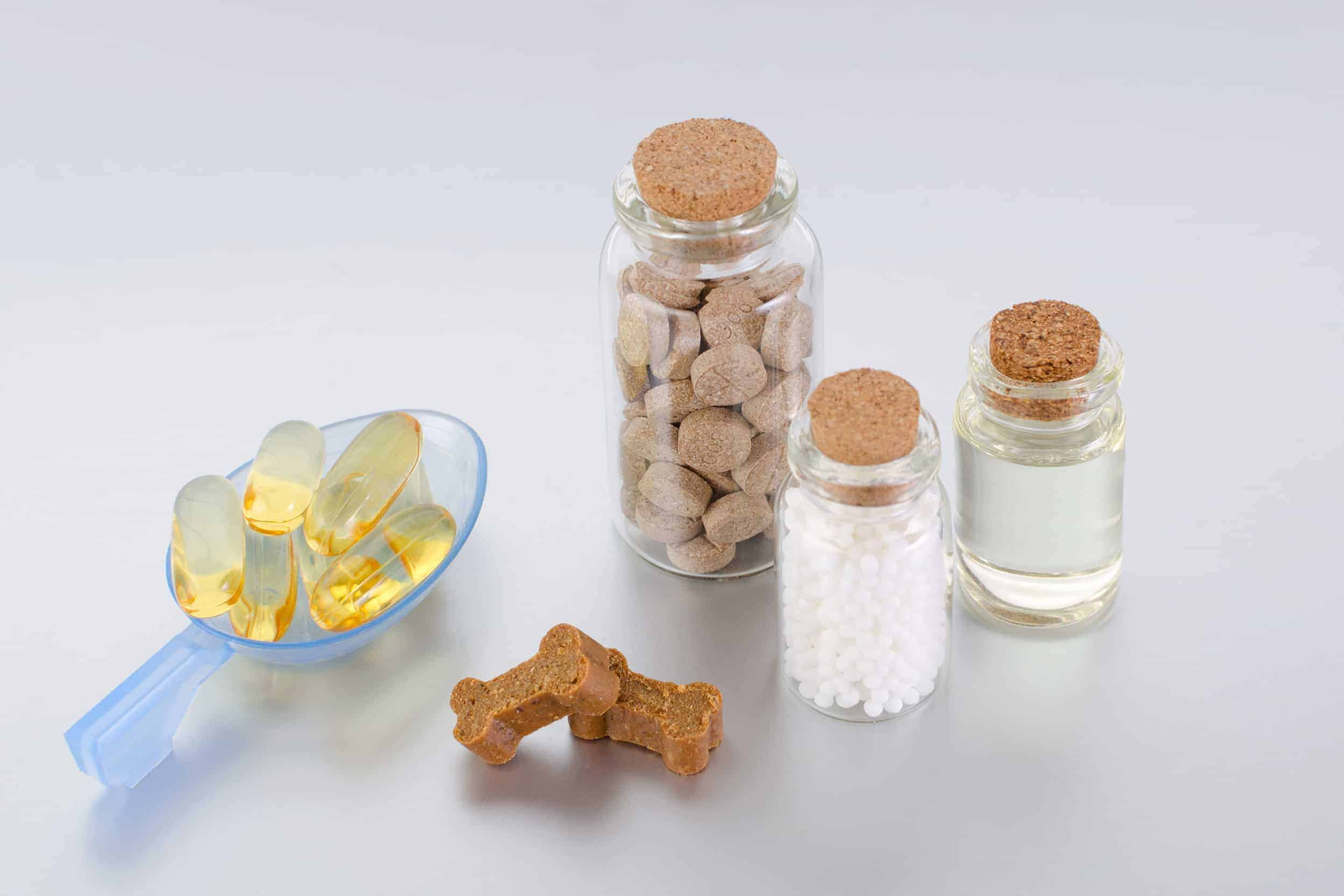 CBD options for dogs photo illustration shows capsules, dog treats, chews, pills, and CBD oil.